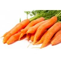 Морковь молодая, Украина
