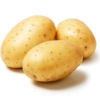 Картофель, Украина