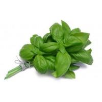 Базилик зеленый в пучках